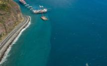 Une baleine en visite sur le chantier de la nouvelle route du littoral